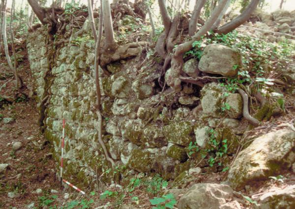 Un tratto della cortina settentrionale del castello del Col Muson