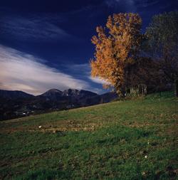 Vittorio Veneto Colori autunnali a Formeniga
